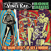 The Sound Effect of Sex and Horror by Vince Ray