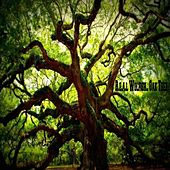 Oak Tree by R.E.A.L Wolfish