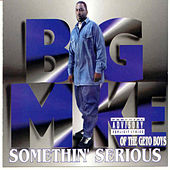 Somethin' Serious by Big Mike