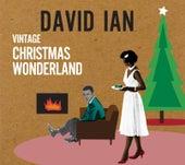 Vintage Christmas Wonderland by David Ian