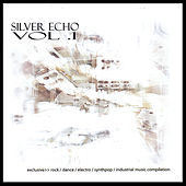 Silver Echo Vol. 1 Electronic Compilation by Various Artists