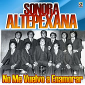 No Me Vuelvo a Enamorar by Sonora Altepexana