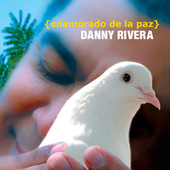 Enamorado De La Paz by Danny Rivera