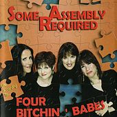 Some Assembly Required by Four Bitchin' Babes