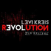 Love Revolution: The Remixes by Levi Kreis