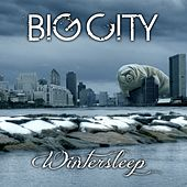 Wintersleep by Big City