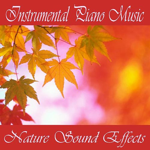 Instrumental Piano Music - Nature Sound Effects by Instrumental Piano Music