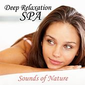 Sounds of Nature - Music for Deep Relaxation - Spa Music by Spa Music