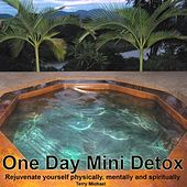 One Day Mini Detox: Rejuvenate Yourself Physically, Mentally and Spiritually by Terry Michael