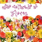 Estão Voltando as Flores by Various Artists