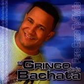 Pero Como Te Olvido by El Gringo De La Bachata