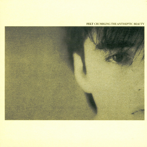 Crumbling The Antiseptic Beauty/The Splendour Of Fear by Felt
