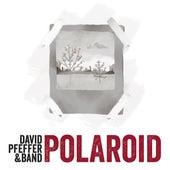 Polaroid by David Pfeffer