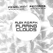 Flaming Clouds by Alex M.O.R.P.H.