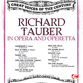 In Opera and Operetta (Digitally Remastered) by Various Artists