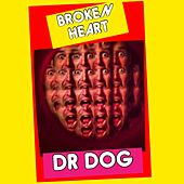 Broken Heart by Dr. Dog