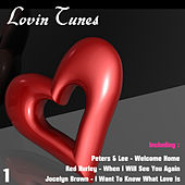 Lovin Tunes 1 by Various Artists