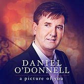 Picture Of You by Daniel O'Donnell