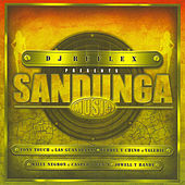 DJ Reflex Presents Sandunga Music by Various Artists
