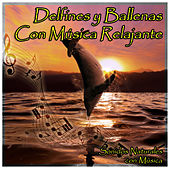 Delfines y Ballenas Con Música Relajante by Natural Sounds