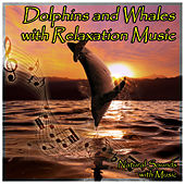 Dolphins and Whales with Relaxation Music by Natural Sounds