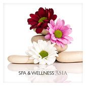 Spa & Wellness in Asia by The Harmony Group