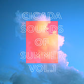 Sounds of Summer Vol. 1 by Cicada