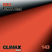Pavo Real by Rex