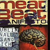 Subliminal Sandwich by Meat Beat Manifesto