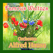 Famous Waltzes by Alfred Hause