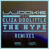 The Hype (Remixes) by Wookie