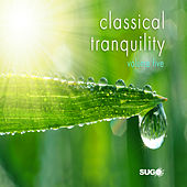 Classical Tranquility, Vol. 5 by Various Artists