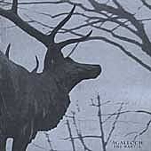 The Mantle by Agalloch