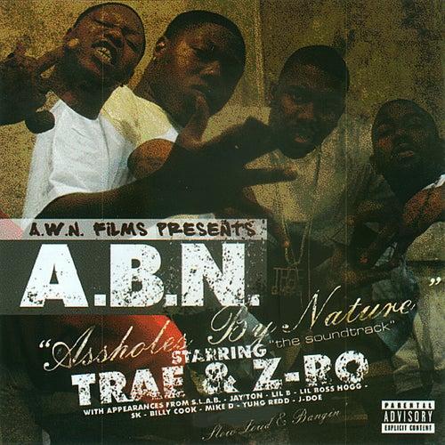 A.B.N. by ABN