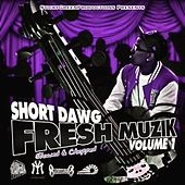Fresh Muzik, Vol. 1 (Slowed & Chopped) by Short Dawg