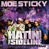 Purple City Byrdgang: Hatin' from the Sideline by Various Artists