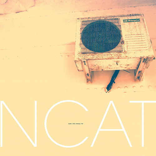 Ncat by Nate Wooley