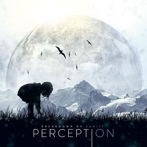 Perception by Breakdown of Sanity