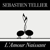 L'amour naissant - Single by Sebastien Tellier
