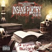 20 Years of Madness by Insane Poetry