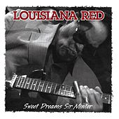 Sweet Dreams Sir Minter by Louisiana Red