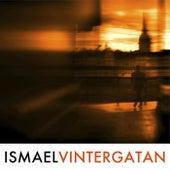 Vintergatan by Ismael