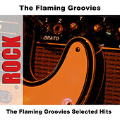 The Flaming Groovies Selected Hits by The Flaming Groovies
