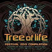 Tree Of Life Festival 2013 - EP von Various Artists