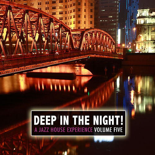 Deep in the Night!, Vol.5 - A Jazz House Experience by Various Artists