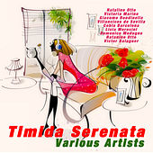 Timida Serenata by Various Artists