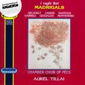 I vaghi fiori - Madrigals by Tillai Aurél