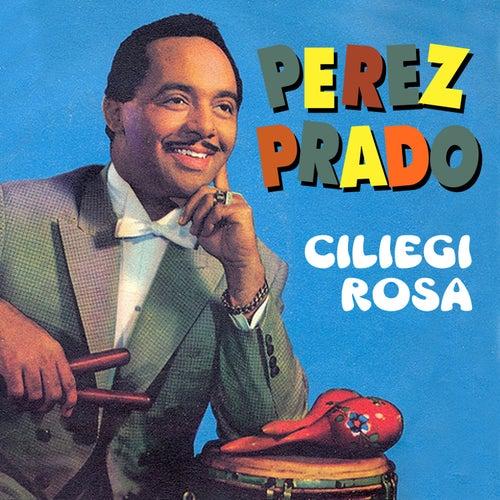 Ciliegi rosa by Perez Prado