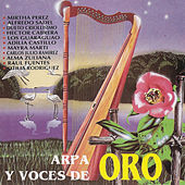Arpa y Voces de Oro by Various Artists