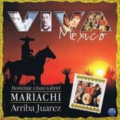 Viva Mexico: Homenaje a Juan Gabriel by Mariachi Arriba Juarez
